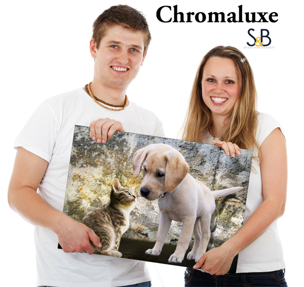 Chroma luxe of Pets