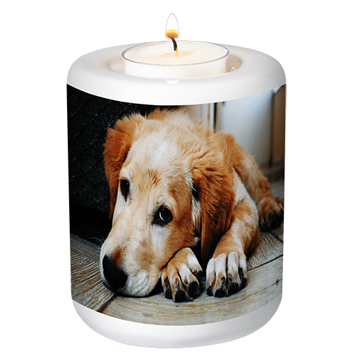 memorial candle holder for pets